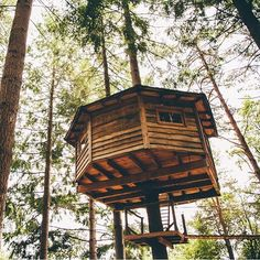 (Spain)#cabanesalsarbres #cabañasenlosarboles #cabaña #cabin #treehouse #tree #trees #forest #bosque #nature #catalunya #happy #love #instagood #cute #photooftheday  #cabinlove #cabinporn  #beautiful #happy #picoftheday #instadaily #amazing #fun #instalike #bestoftheday  #instamood #cabinlifestyle #wilderness #beautifulplaces #thecabinchronicles #cute