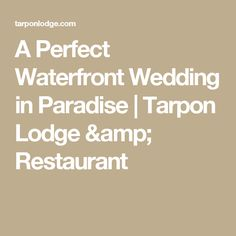 A Perfect Waterfront Wedding in Paradise | Tarpon Lodge & Restaurant