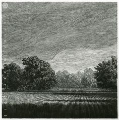 """""""Grass,"""" 7 by 7 in, Drawing in Ink, 2013 by Taylor Mazer"""