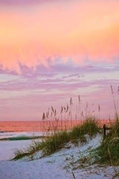 Beach sunset.  Sea oats.  She would have loved to paint this.