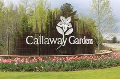 Callaway Gardens...... A little drive out of the city  in Columbus, Ga you will find this beautiful garden!