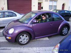 purple punch buggies   Beetle Purple