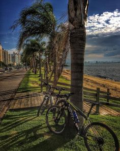 Beira da Baía em Florianópolis! #love  #strava #pedal #mtb #ciclismo #bike #ascombai #italiabrasil #florianopolis #voltadailha #ilhadamagia #beach #praias #floripa #cicloturismo #happy #7voltaailhadebike #bike #bikers #island #nature #natureza #paz #adventure #aventura #santacatarina #mountainbike #nqfs #lifestyle #lifestyle