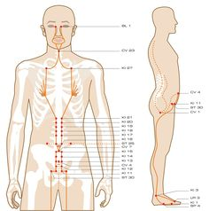 Acupuncture Points Guide – View All Meridians On this page, you'll find a complete visual guide to 20 acupuncture meridians and more than 360 acupuncture points. Table Of Contents The 12 Primary Meridians Meridian Acupuncture, Acupuncture Benefits, Acupuncture Points, Acupressure Points, Meridian Massage, Acupressure Therapy, Acupressure Treatment, Yoga Yin, Meridian Points