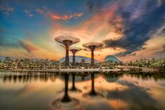 Sunrise at Garden by the Bay, Singapore. Photo by Rajat  Chauhan