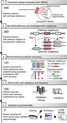 Schematic view of the sequence detection pipeline. (credit: Prediction and identification of sequences coding for orphan enzymes using genomic and metagenomic neighbours - Takuji Yamada) Systems Biology, Orphan, Pathways, Behavior, Coding, Science, Animal, Ideas, Behance