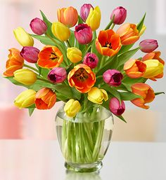 I love Tulips.  They look nice and are pretty cheap compared to a lot of other flowers.