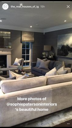 Sophie Paterson Interiors French Country Living Room, Classic Living Room, Elegant Living Room, Living Room On A Budget, Living Room Grey, Living Room Interior, Home Living Room, Living Room Designs, Living Room Decor