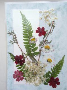 Kaarten met gedroogde bloemen