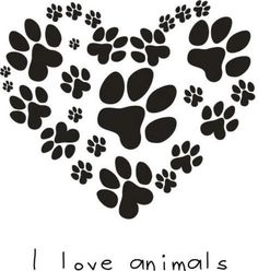 This is for Zoey, Zeus, Sophie & Bart  and this is for all my gone fur babies