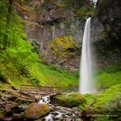 Elowah Falls, Columbia River Gorge, OR Photo by Pattie Walsh — National… The Places Youll Go, Places To Go, Columbia River Gorge, National Geographic Photos, Landscape Photographers, Travel Usa, Amazing Photography, Oregon, Natural Beauty