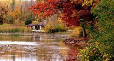 A Secret Autumn, Herrick Lake, Wheaton, Illinois
