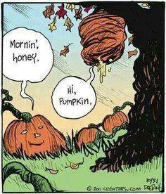 Hi pumpkin...