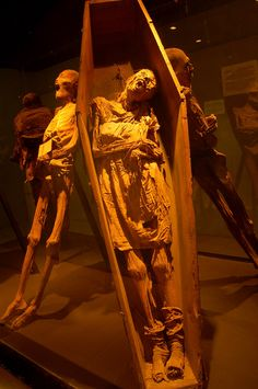 The mummified remains of 19th century cholera victims on display at the El Museo De Las Momias in Guanajuato, Mexico. More photos here: http://www.cultofweird.com/death/guanajuato-mexico-mummies/