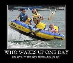 We're going tubing; get the cat! What?