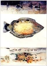 Image result for janet ayliffe etchings
