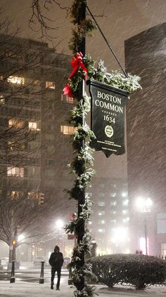 Boston Common in the snow / 12 essential activities for a weekend in Boston / A Globe Well Travelled