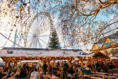 Wondering about Christmas traditions in Italy? Here's what to know about Christmas in Italy, including presepi, the Befana, and more! Paris Christmas Market, Christmas In Italy, Best Christmas Markets, Christmas Traditions, Christmas Fun, Italian Risotto Recipe, Risotto Recipes, Celebration In The Oaks, Rome Tours