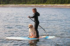 I want to go Standup Paddle Boarding with my dogs!