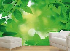 natuur-fotobehang
