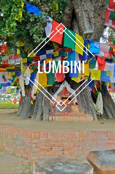 Lumbini, Nepal was the birthplace of Buddha and today is a gorgeous tribute site…
