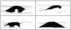 Visual Investigations ¬ landscape-perception.com