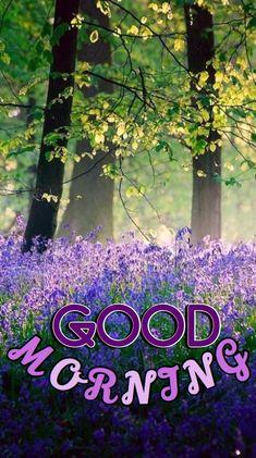 Good Morning Romantic, Good Morning Beautiful Pictures, Good Morning Nature, Good Morning Images Flowers, Good Morning Cards, Good Morning Photos, Good Morning Love, Good Morning Greetings, Morning Pictures