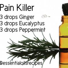 """""""READ BELOW""""! This is the best pain killer combination! I've used it over and over for different kinds of pain on me and other people. And it works wonderfully! From muscle spasms to sciatic to hips feet pain etc. Apply mix directly to affected ar Essential Oils For Babies, Essential Oils Guide, Doterra Essential Oils, Young Living Essential Oils, Ginger Essential Oil, Essential Oil Uses, Healing Oils, Aromatherapy Oils, Laura Lee"""