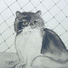 Meu Fofinho.❤😺🐾 #inktober #inktober2016 #cat #gatinho #gatopersa #drawing #desenho #inktoberday3