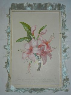 Victorian Christmas and New Year Fringed Card, Hildesheimer, Floral