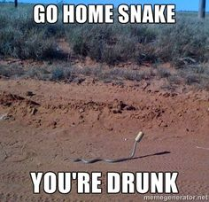 snake meme | Snake memes are awesome !