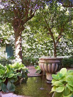 hortensias de invierno en el patio de los narajos del palacio de viana cordoba
