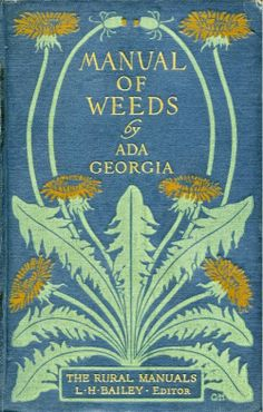 This book cover makes dandelions look quite stylish.