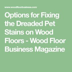 Options for Fixing the Dreaded Pet Stains on Wood Floors - Wood Floor Business Magazine