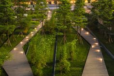 A map of the best contemporary landscape architecture projects from around the world. Landscape Elements, Contemporary Landscape, Urban Landscape, Landscape Design, Biophilic Architecture, Green Architecture, Landscape Architecture, Parque Linear, Parks