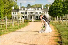 Steph + Dan - Keswick Vineyards Wedding - Charlottesville Wedding Photographer - C. Tyler Corvin Studio
