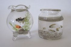 A classic goldfish bowl and a jar of other tiny fish in 1/12 scale by Miyuki Kobayashi.