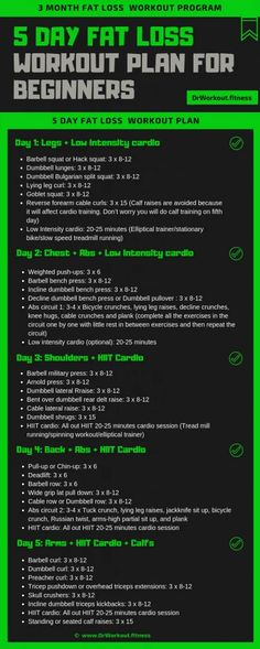 Fat Loss Gym Workout Plan for Beginners   Dr Workout