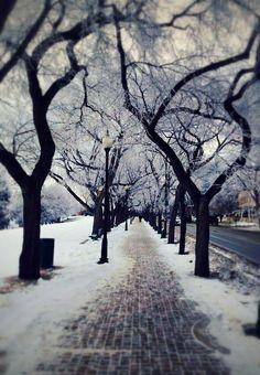 Winter in Saskatoon, Canada