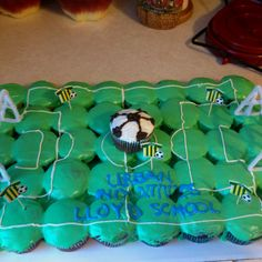 Soccer Field Cupcake cake from Lexty's Party Treats & more