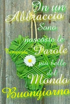 Immagini per Buongiorno amici 5830 Good Morning Roses, Italian Memes, Italian Phrases, Messages, Flower Cards, Good Mood, Morning Quotes, Happy Sunday, Facebook