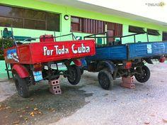 Cuba, a Playa Santa Lucia tra granchi, snorkeling e resort