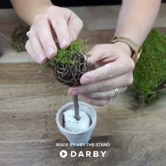 Topiary How to make Mini Farmhouse Style Topiaries Home Crafts, Fun Crafts, Diy And Crafts, Arts And Crafts, Craft Projects, Projects To Try, Deco Nature, Creation Deco, Mason Jar Diy