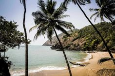 What they never told you about South Goa