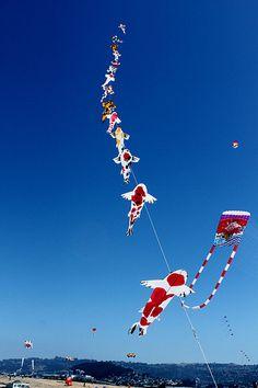 Japanese Kites II