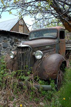 Vintage Trucks, Old Trucks, Pickup Trucks, Farm Trucks, Vintage Auto, Diesel Trucks, Lifted Trucks, Classic Chevy Trucks, Classic Cars