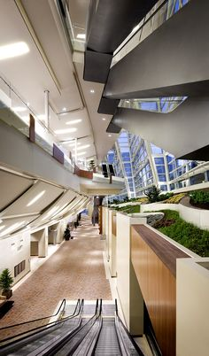 This is where people come to change their thinking when meeting in Las Vegas. Where innovators and ideas mingle in the natural light of a massive glass curtain wall.