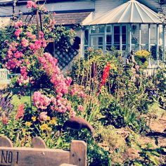 Cottage at Winchelsea Beach, nr Rye, East Sussex