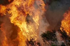 Cape Town Fire ‹ Ark Images, Powered By Shawn Benjamin Photography Cape Town, South Africa, Mountain, Fire, Celestial, Photography, Outdoor, Image, Outdoors