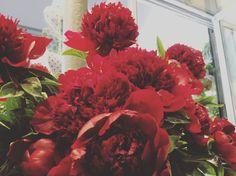 Quelques Photos, Wreaths, Boutique, Fall, Plants, Home Decor, Flowers, Autumn, Decoration Home